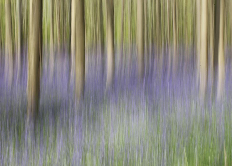 Foto van Jaco van den Brink gemaakt voor de opdracht Bewust Bewogen